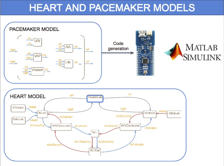 Hardware-In-the-Loop Simulation and Energy Optimization of Cardiac Pacemakers